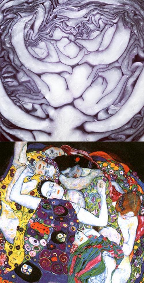 Redcabbage-Klimt-500px.jpg