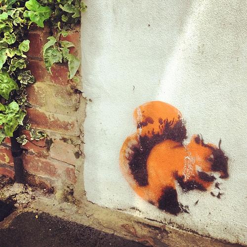Stewy-Squirrel.jpg