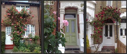 doors-n-roses.jpg