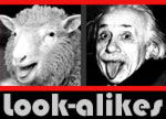 Look-alikes