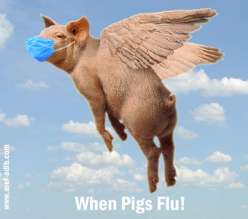pigs_flu.jpg