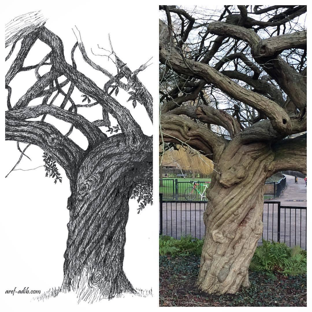 tree-2008-2018.jpg